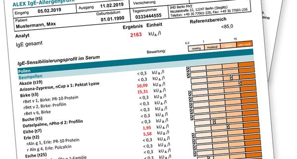 Abbildung eines Befundberichtes Bluttest Allergie aus Ihrer HNO-Praxis mit Schwerpunkt Allergologie in Nürnberg
